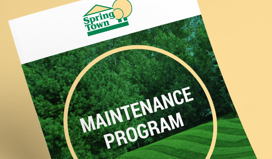 Spring Town Maintenance Program